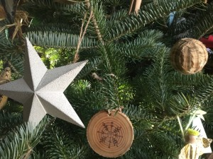 Blog: Sustainable Christmas Ideas