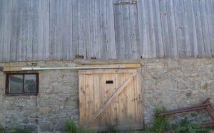 Blog: The Barn Swallows at Valens Lake