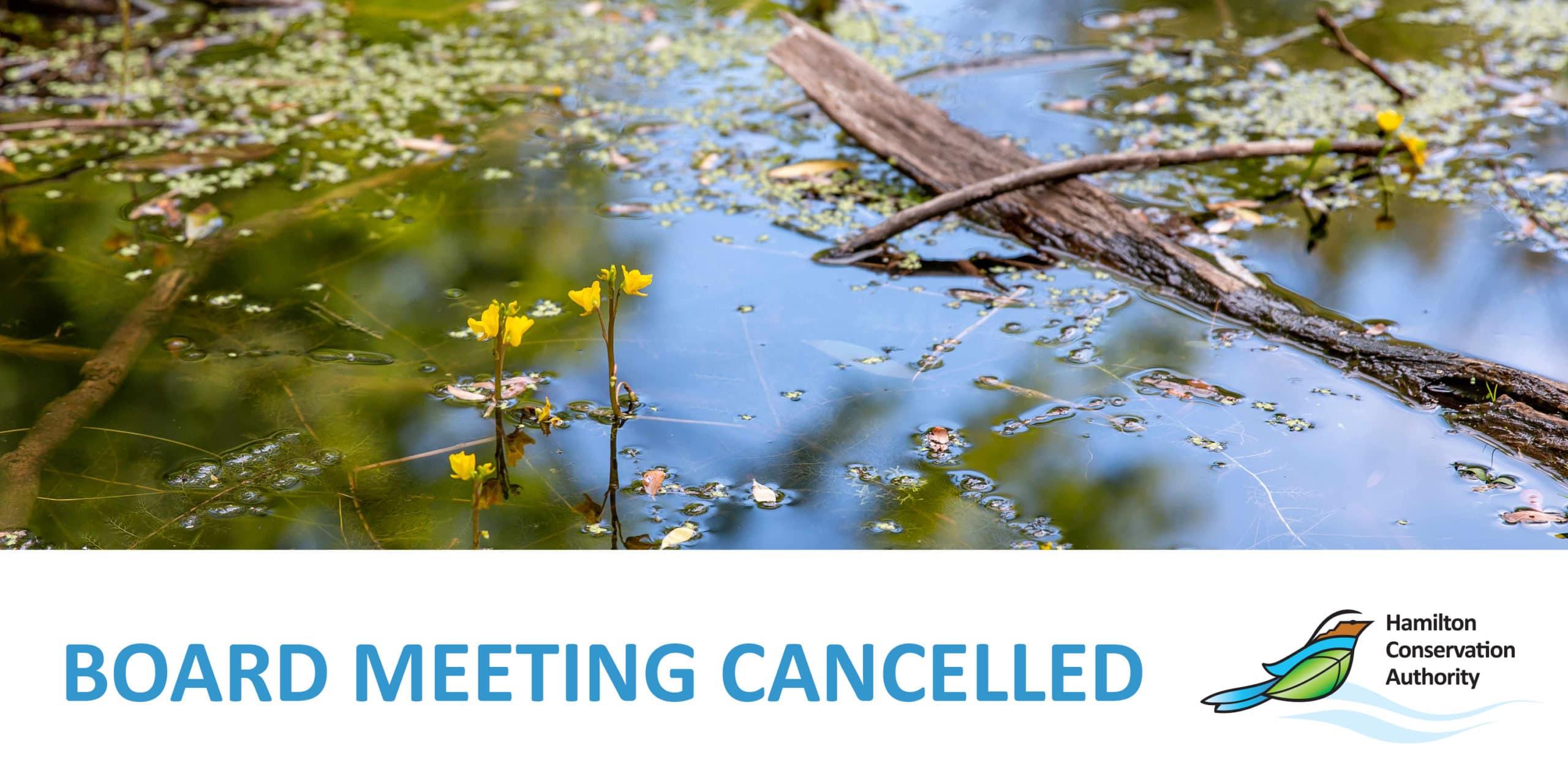 Board Meeting CancelledV6