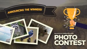 Picture Perfect! HCA 2019 Photo Contest Winners Announced