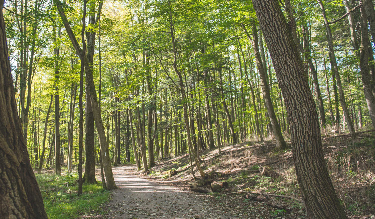 hiking guide blog